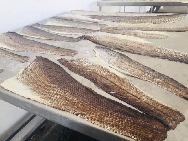 curtido de piel de pescado