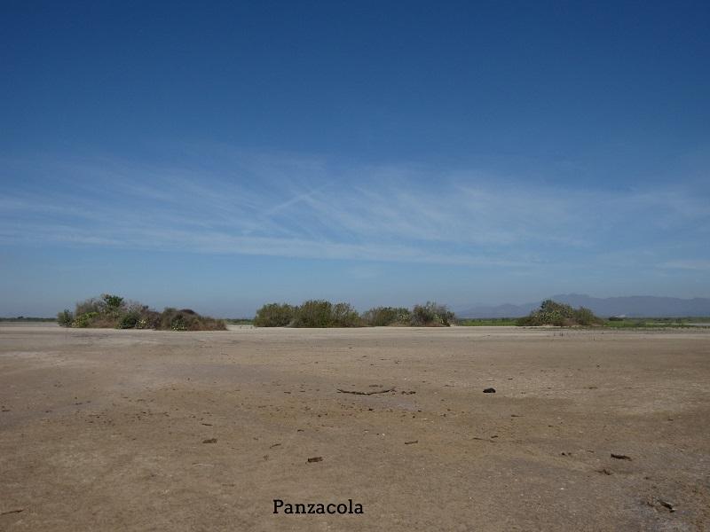 Panzacola Escuinapa