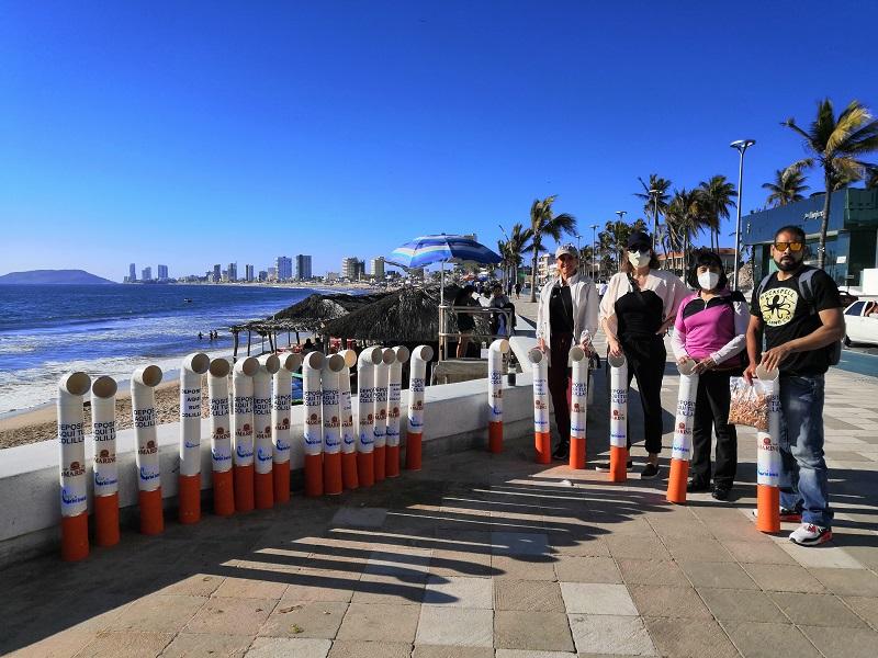 Colilleros en playas de Mazatlán