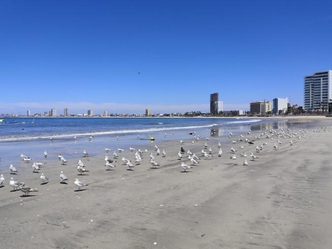 Playas Mazatlán